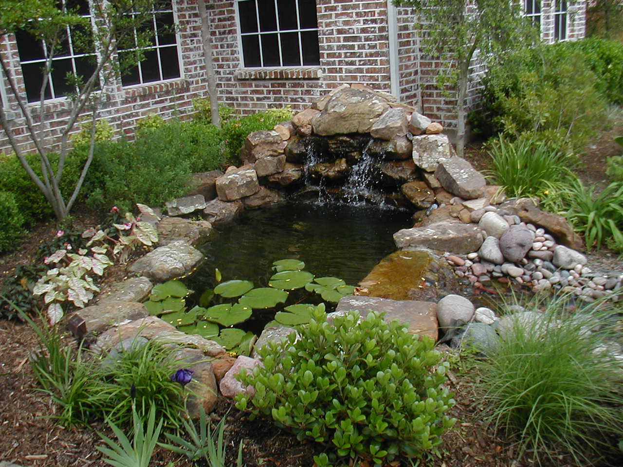 INSTALLATION DESIGN, WATER GARDEN, WATER BASIN, WATERFALLS, PONDS CASCADES, LANDSCAPE, LANDSCAPING, POOLSIDE, MONTREAL SOUTH SHORE, VERCHERES, VARENNES, STE-JULIE STE-AMABLE, BOUCHERVILLE, CONTRECOEUR, HYACINTHE, YAMASKA, SOREL-TRACY